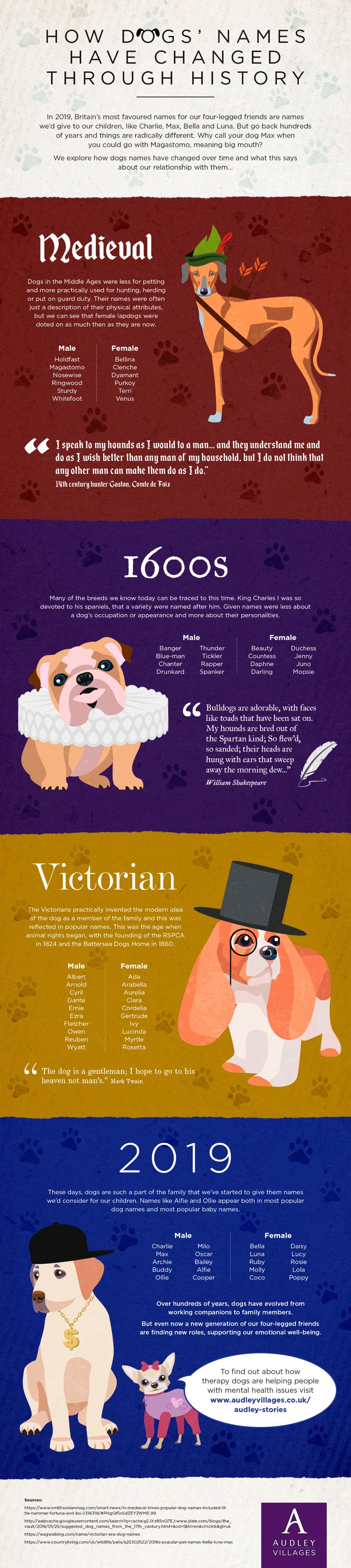 Therapy Dogs Audley Villages Infographic